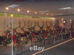 8 lifesize reindeer Christmas display. Rudolph is not included with this set